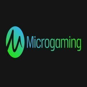 Microgaming new slot